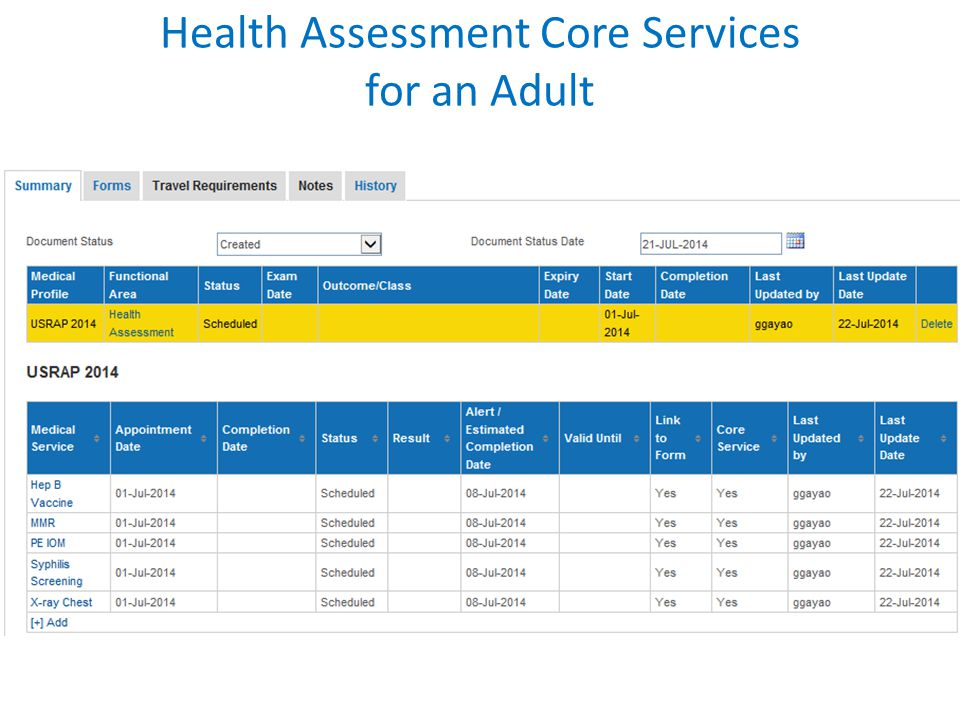 Health Assessment Core Services for an Adult