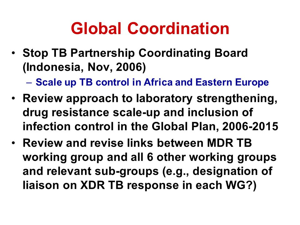 Global Coordination Stop TB Partnership Coordinating Board (Indonesia, Nov, 2006) –Scale up TB control in Africa and Eastern Europe Review approach to laboratory strengthening, drug resistance scale-up and inclusion of infection control in the Global Plan, 2006-2015 Review and revise links between MDR TB working group and all 6 other working groups and relevant sub-groups (e.g., designation of liaison on XDR TB response in each WG )