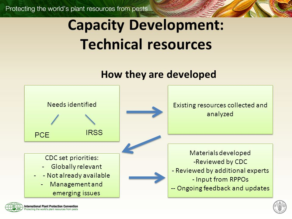 Capacity Development: Technical resources How they are developed Needs identified Existing resources collected and analyzed CDC set priorities: -Globally relevant -- Not already available -Management and emerging issues CDC set priorities: -Globally relevant -- Not already available -Management and emerging issues PCE IRSS Materials developed -Reviewed by CDC - Reviewed by additional experts - Input from RPPOs -- Ongoing feedback and updates Materials developed -Reviewed by CDC - Reviewed by additional experts - Input from RPPOs -- Ongoing feedback and updates