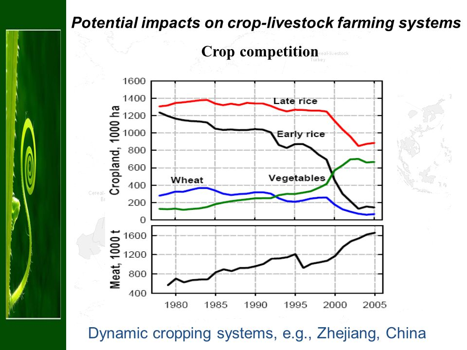 Dynamic cropping systems, e.g., Zhejiang, China Crop competition Potential impacts on crop-livestock farming systems