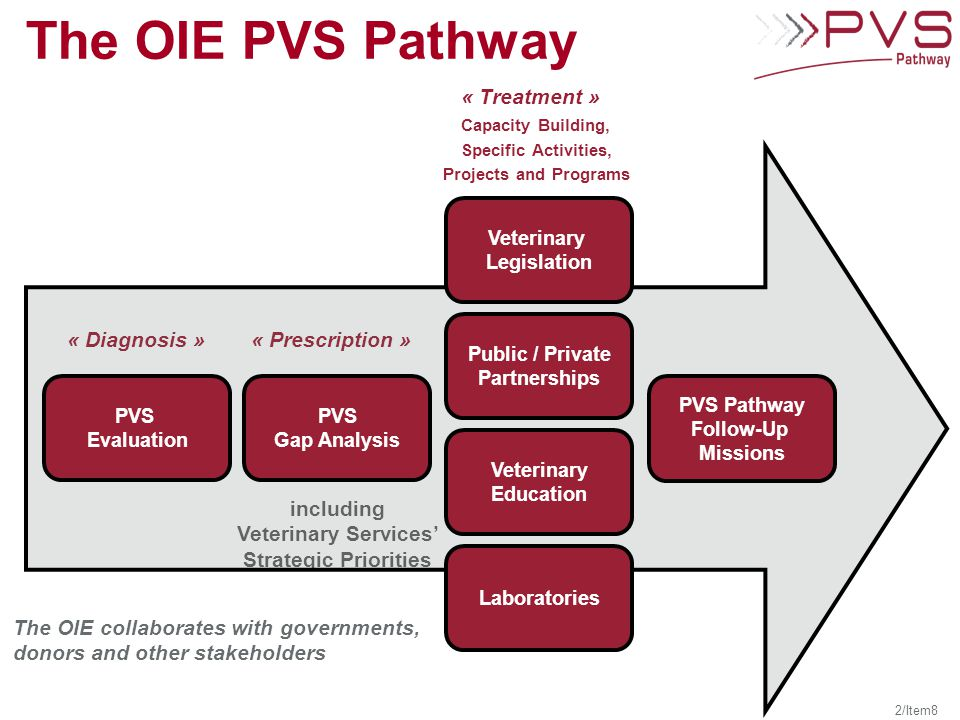 The OIE PVS Pathway « Diagnosis »« Prescription » « Treatment » The OIE collaborates with governments, donors and other stakeholders including Veterinary Services' Strategic Priorities 2/Item8 Capacity Building, Specific Activities, Projects and Programs PVS Gap Analysis PVS Evaluation PVS Pathway Follow-Up Missions Veterinary Legislation Public / Private Partnerships Veterinary Education Laboratories