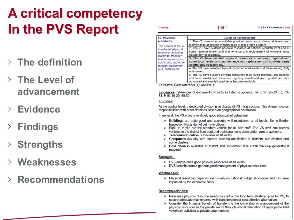 A critical competency In the PVS Report The definition The Level of advancement Evidence Findings Strengths Weaknesses Recommendations