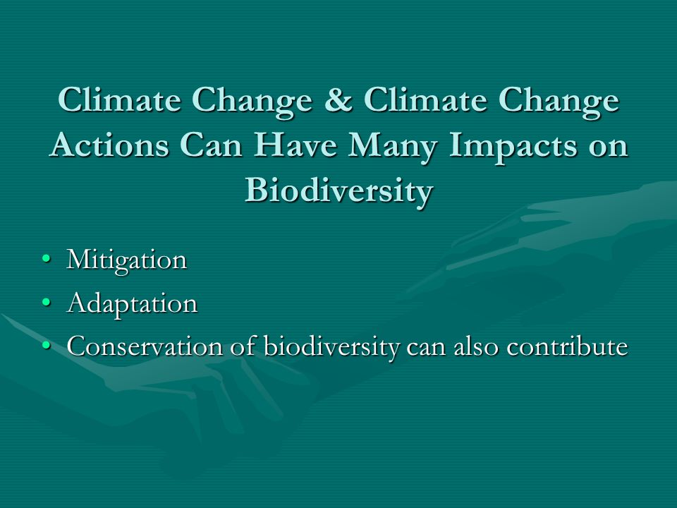 Climate Change & Climate Change Actions Can Have Many Impacts on Biodiversity MitigationMitigation AdaptationAdaptation Conservation of biodiversity c