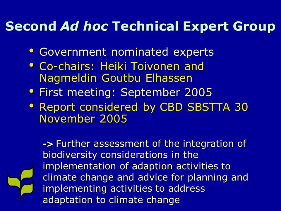 Second Ad hoc Technical Expert Group Government nominated experts Government nominated experts Co-chairs: Heiki Toivonen and Nagmeldin Goutbu Elhassen Co-chairs: Heiki Toivonen and Nagmeldin Goutbu Elhassen First meeting: September 2005 First meeting: September 2005 Report considered by CBD SBSTTA 30 November 2005 Report considered by CBD SBSTTA 30 November > Further assessment of the integration of biodiversity considerations in the implementation of adaption activities to climate change and advice for planning and implementing activities to address adaptation to climate change