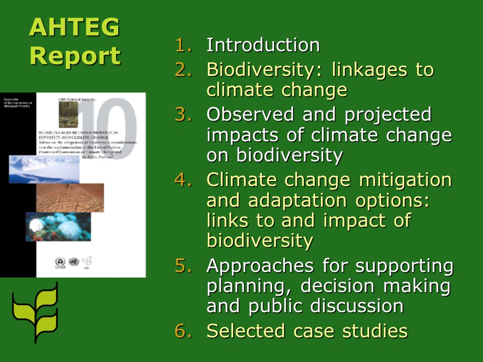 AHTEG Report 1.Introduction 2.Biodiversity: linkages to climate change 3.Observed and projected impacts of climate change on biodiversity 4.Climate change mitigation and adaptation options: links to and impact of biodiversity 5.Approaches for supporting planning, decision making and public discussion 6.Selected case studies