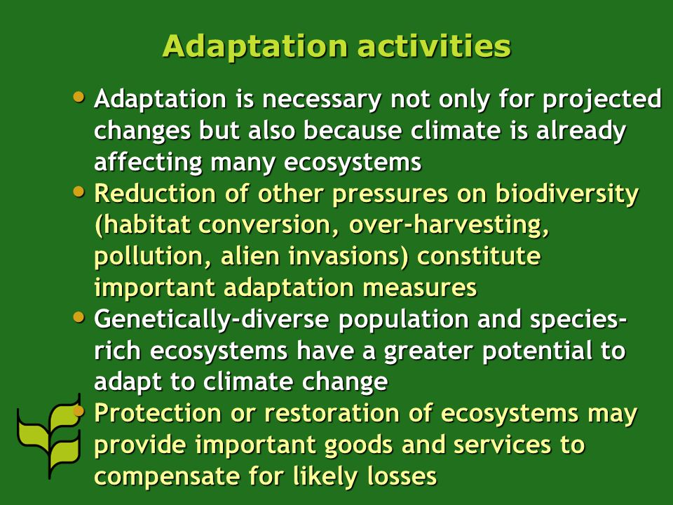 Adaptation activities Adaptation is necessary not only for projected changes but also because climate is already affecting many ecosystems Adaptation is necessary not only for projected changes but also because climate is already affecting many ecosystems Reduction of other pressures on biodiversity (habitat conversion, over-harvesting, pollution, alien invasions) constitute important adaptation measures Reduction of other pressures on biodiversity (habitat conversion, over-harvesting, pollution, alien invasions) constitute important adaptation measures Genetically-diverse population and species- rich ecosystems have a greater potential to adapt to climate change Genetically-diverse population and species- rich ecosystems have a greater potential to adapt to climate change Protection or restoration of ecosystems may provide important goods and services to compensate for likely losses Protection or restoration of ecosystems may provide important goods and services to compensate for likely losses