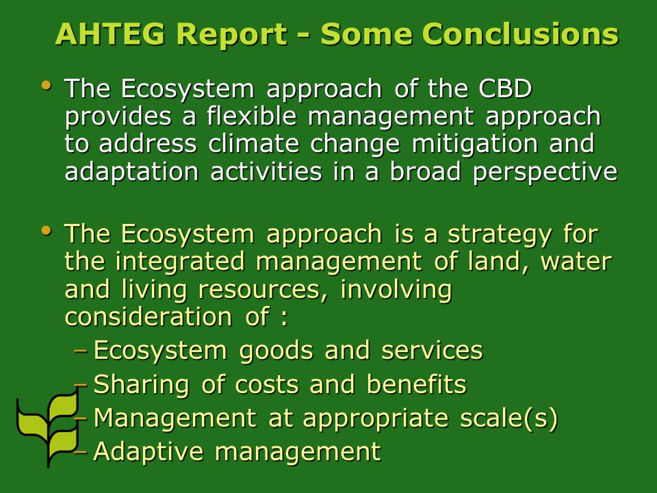 AHTEG Report - Some Conclusions The Ecosystem approach of the CBD provides a flexible management approach to address climate change mitigation and adaptation activities in a broad perspective The Ecosystem approach of the CBD provides a flexible management approach to address climate change mitigation and adaptation activities in a broad perspective The Ecosystem approach is a strategy for the integrated management of land, water and living resources, involving consideration of : The Ecosystem approach is a strategy for the integrated management of land, water and living resources, involving consideration of : –Ecosystem goods and services –Sharing of costs and benefits –Management at appropriate scale(s) –Adaptive management