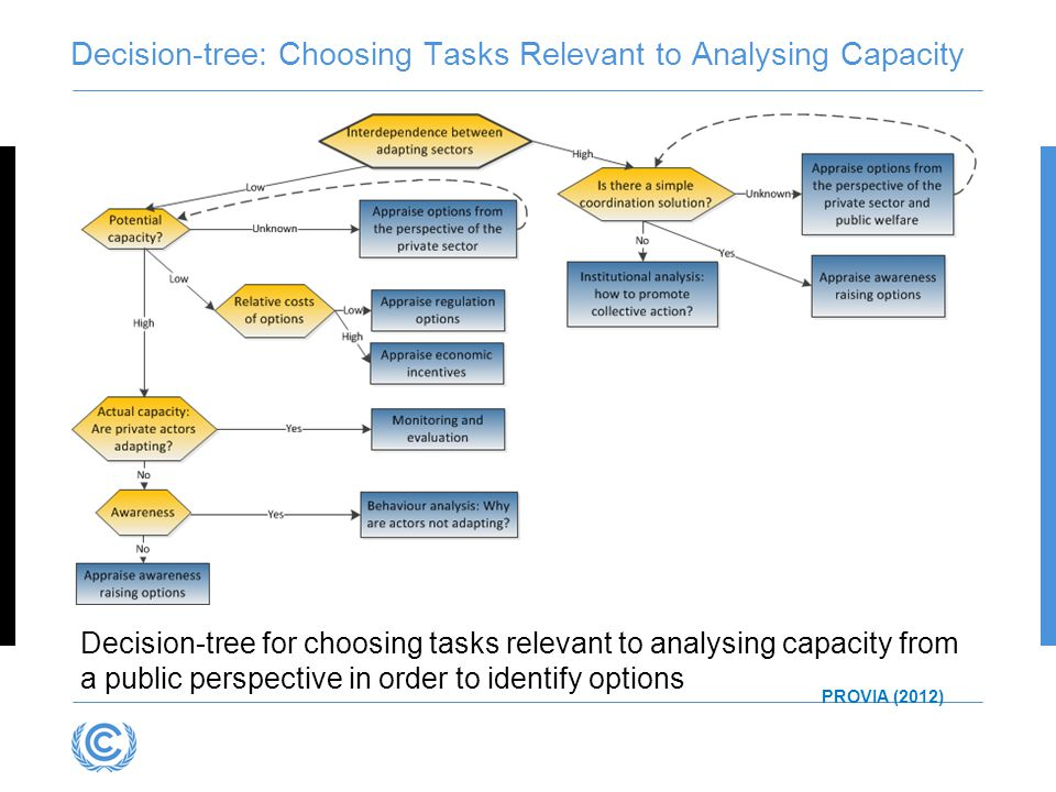Decision-tree for choosing tasks relevant to analysing capacity from a public perspective in order to identify options Decision-tree: Choosing Tasks R