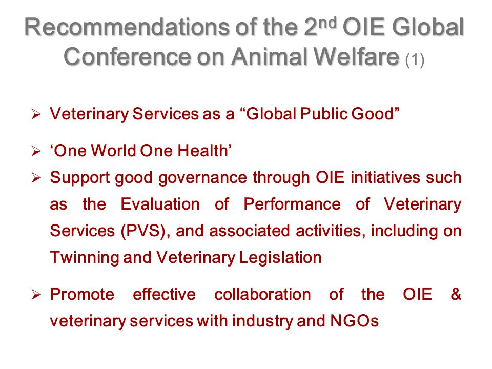   Veterinary Services as a Global Public Good   'One World One Health'   Support good governance through OIE initiatives such as the Evaluation of Performance of Veterinary Services (PVS), and associated activities, including on Twinning and Veterinary Legislation   Promote effective collaboration of the OIE & veterinary services with industry and NGOs Recommendations of the 2 nd OIE Global Conference on Animal Welfare Recommendations of the 2 nd OIE Global Conference on Animal Welfare (1)