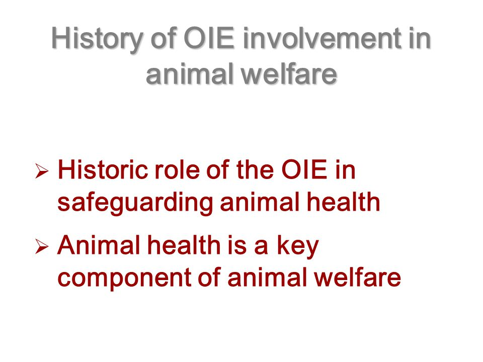 History of OIE involvement in animal welfare  Historic role of the OIE in safeguarding animal health  Animal health is a key component of animal welfare