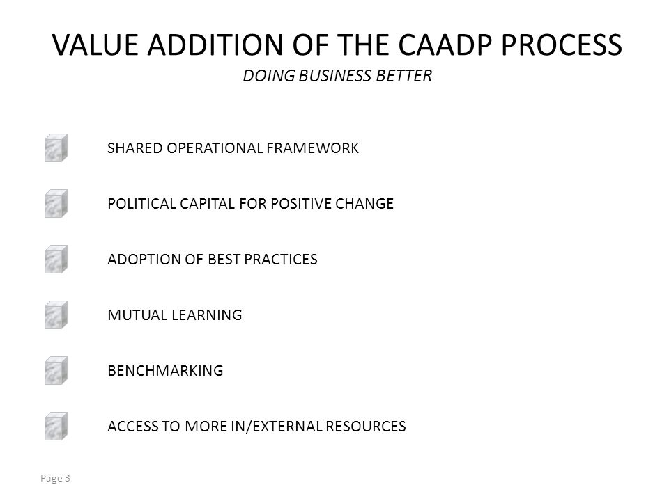 Page 3 VALUE ADDITION OF THE CAADP PROCESS DOING BUSINESS BETTER SHARED OPERATIONAL FRAMEWORK ADOPTION OF BEST PRACTICES MUTUAL LEARNING BENCHMARKING ACCESS TO MORE IN/EXTERNAL RESOURCES POLITICAL CAPITAL FOR POSITIVE CHANGE