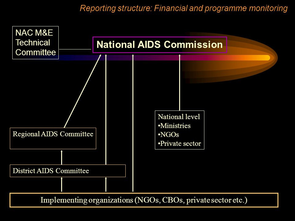 National AIDS Commission NAC M&E Technical Committee Implementing organizations (NGOs, CBOs, private sector etc.) Reporting structure: Financial and programme monitoring Regional AIDS Committee District AIDS Committee National level Ministries NGOs Private sector