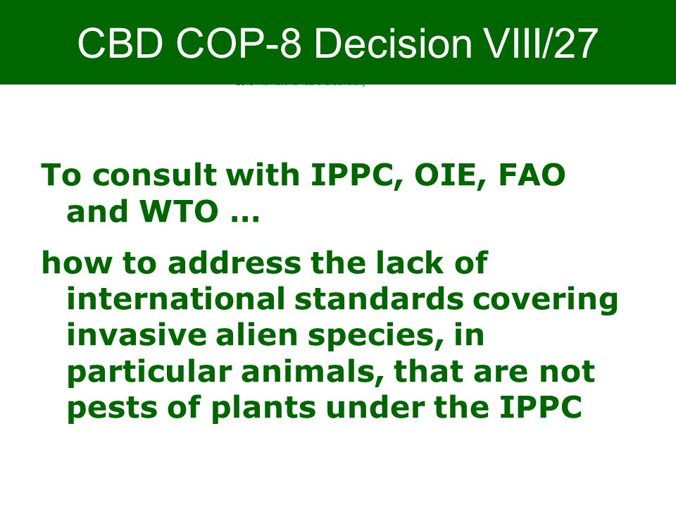 Biodiversity is life Biodiversity is our life To consult with IPPC, OIE, FAO and WTO … how to address the lack of international standards covering invasive alien species, in particular animals, that are not pests of plants under the IPPC CBD COP-8 Decision VIII/27