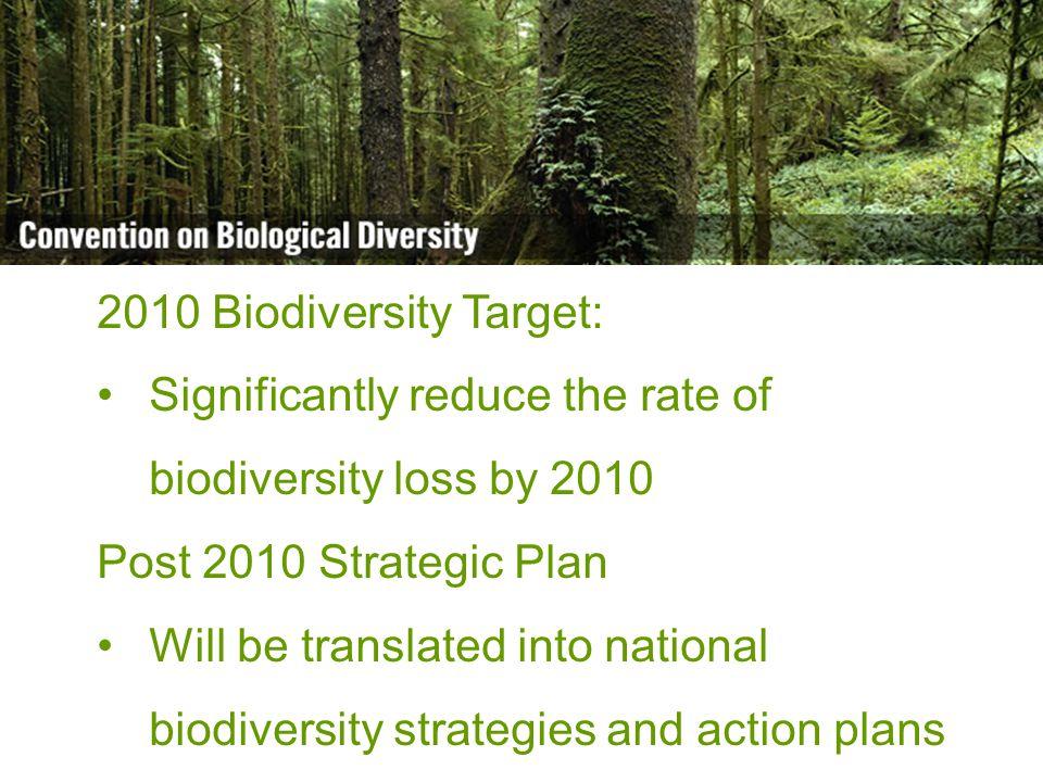 Biodiversity is life Biodiversity is our life Official UN languages: ar - en - es - fr - ru - zh Other available languages: de - dv - el - fa - it - ja - ko - nl - nn - pl - pt - sl - sv - tr