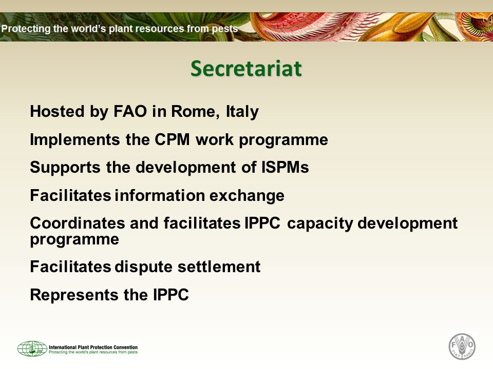 Secretariat Hosted by FAO in Rome, Italy Implements the CPM work programme Supports the development of ISPMs Facilitates information exchange Coordinates and facilitates IPPC capacity development programme Facilitates dispute settlement Represents the IPPC