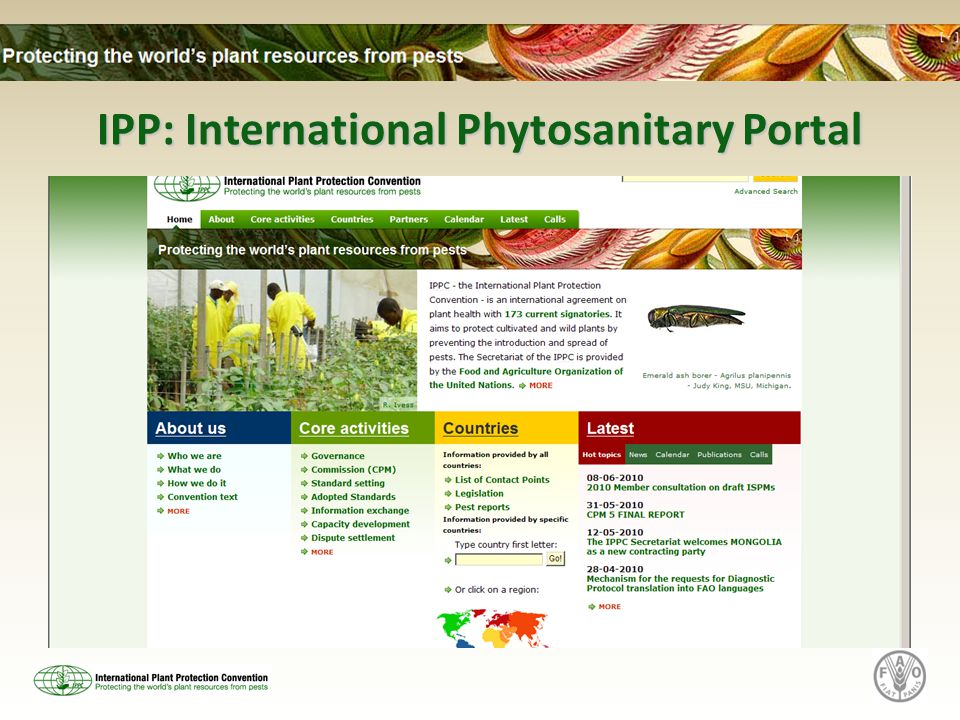 IPP: International Phytosanitary Portal