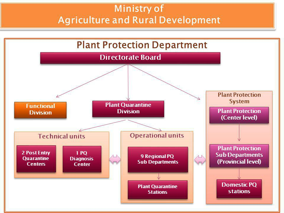 Plant Protection Department Operational units Plant Protection System Ministry of Agriculture and Rural Development Ministry of Agriculture and Rural Development Directorate Board Functional Division Plant Protection (Center level) Plant Protection (Center level) Plant Quarantine Division Domestic PQ stations Domestic PQ stations 9 Regional PQ Sub Departments 9 Regional PQ Sub Departments Plant Quarantine Stations Plant Quarantine Stations Technical units 2 Post Entry Quarantine Centers 2 Post Entry Quarantine Centers 1 PQ Diagnosis Center 1 PQ Diagnosis Center Plant Protection Sub Departments (Provincial level) Plant Protection Sub Departments (Provincial level)