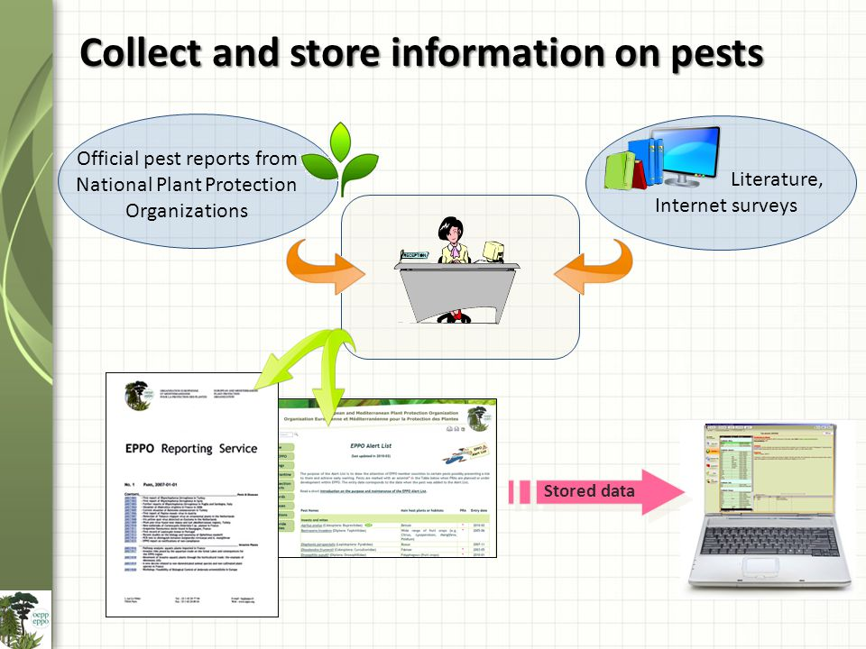 Collect and store information on pests Official pest reports from National Plant Protection Organizations Literature, Internet surveys Stored data