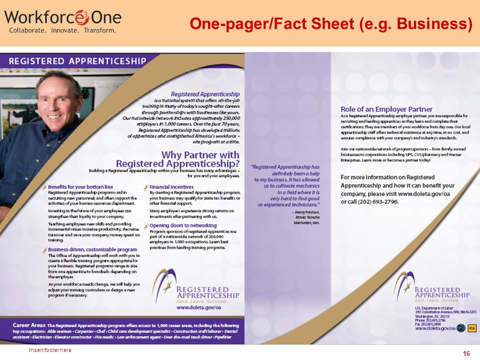 16 Insert footer here One-pager/Fact Sheet (e.g. Business)