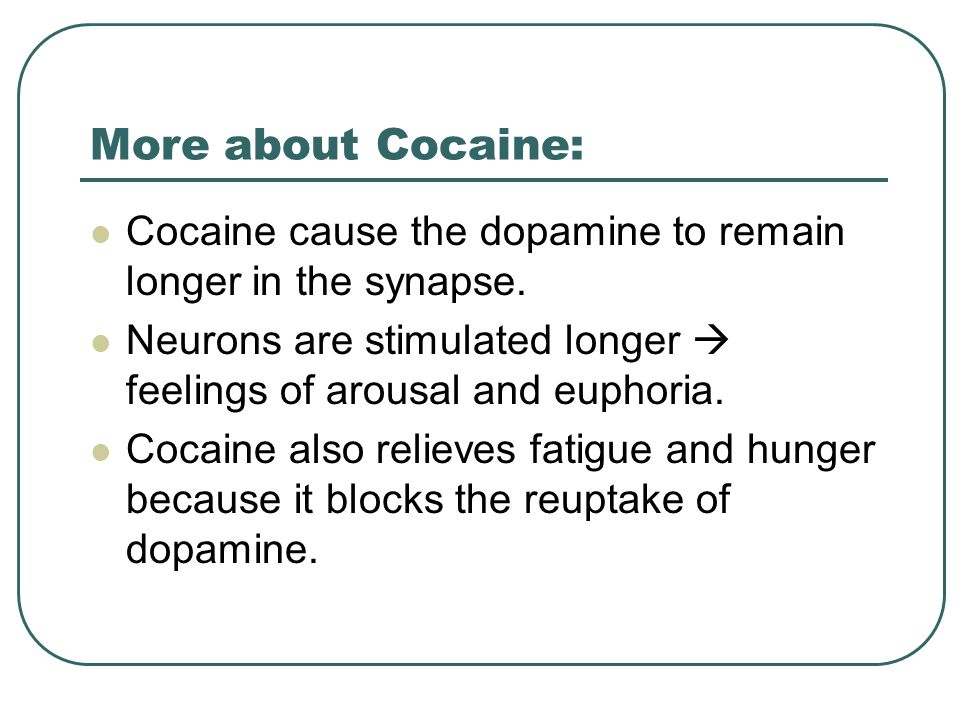 More about Cocaine: Cocaine cause the dopamine to remain longer in the synapse.