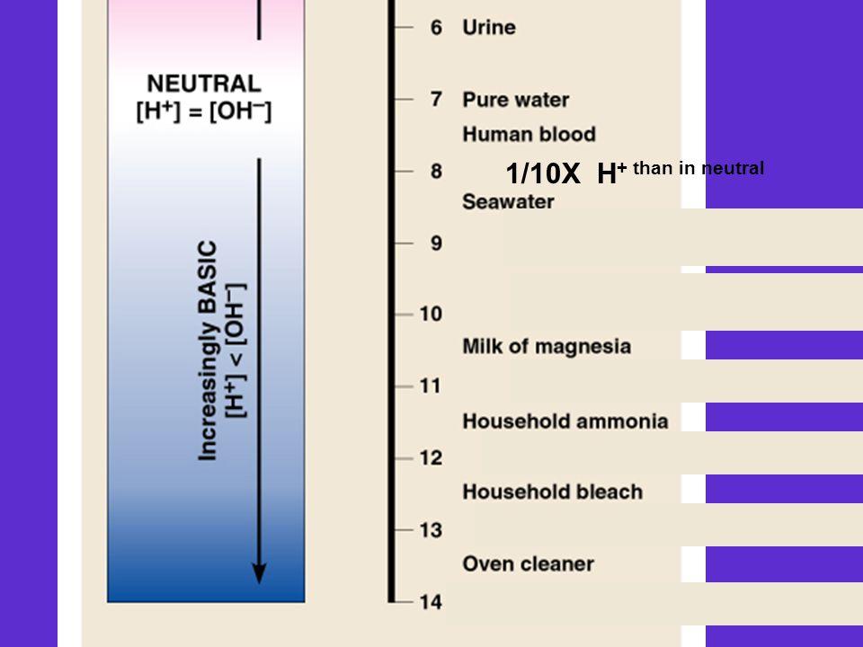 1/10X H + than in neutral 1/100X H + than in neutral 1/1,000X H + than in neutral 1/10,000X H + than in neutral 1/100,000X H + than in neutral 1/1,000,000X H + than in neutral 1/10,000,000X H + than in neutral