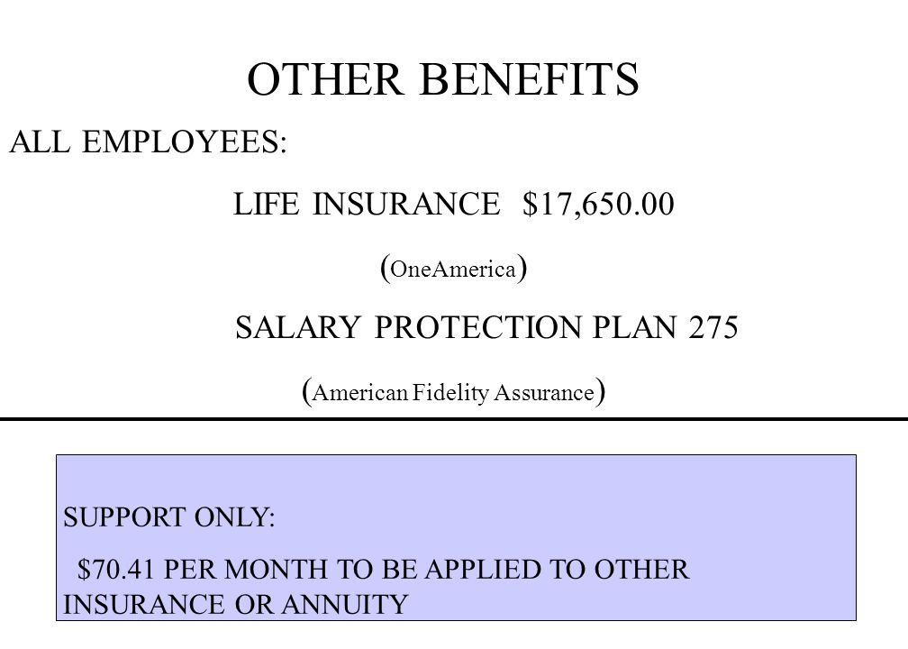 OTHER BENEFITS ALL EMPLOYEES: LIFE INSURANCE $17,650.00 ( OneAmerica ) SALARY PROTECTION PLAN 275 ( American Fidelity Assurance ) SUPPORT ONLY: $70.41 PER MONTH TO BE APPLIED TO OTHER INSURANCE OR ANNUITY