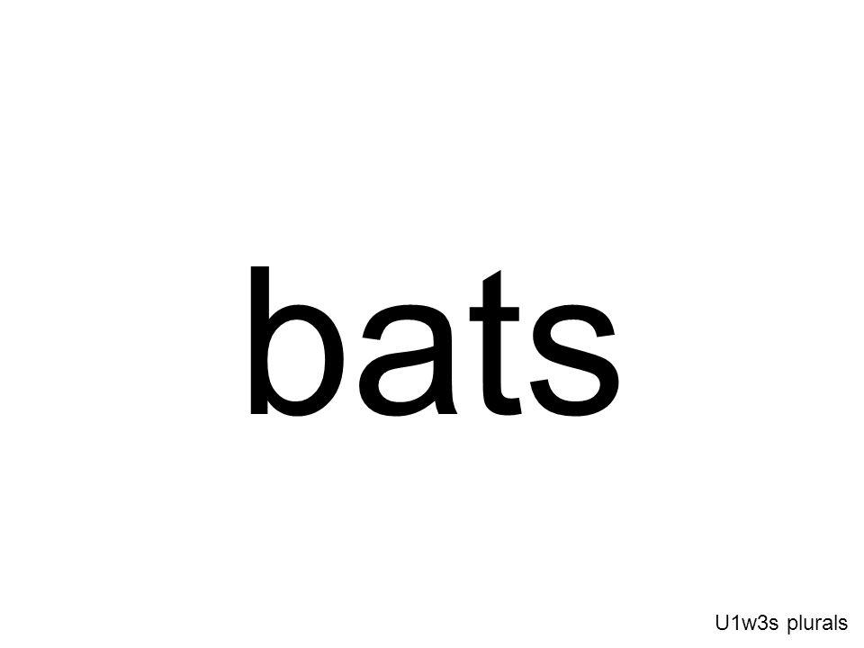 bats U1w3s plurals
