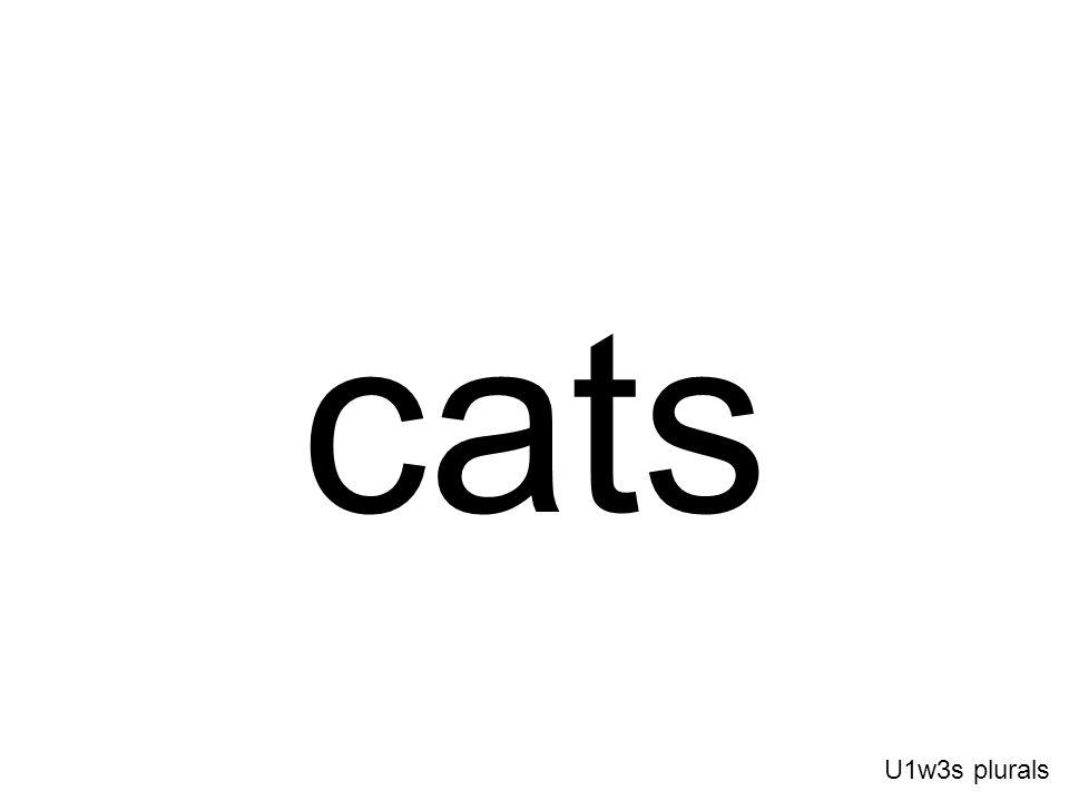 cats U1w3s plurals