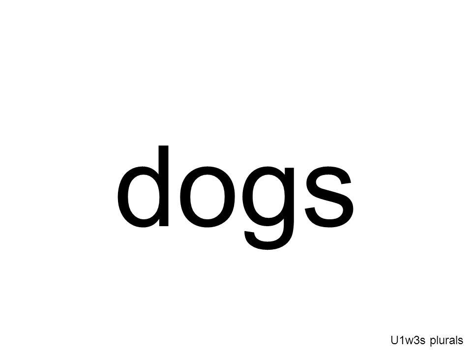 dogs U1w3s plurals