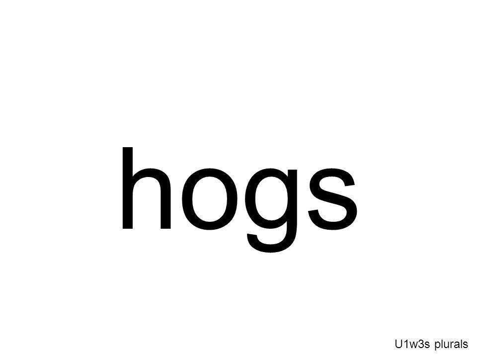 hogs U1w3s plurals