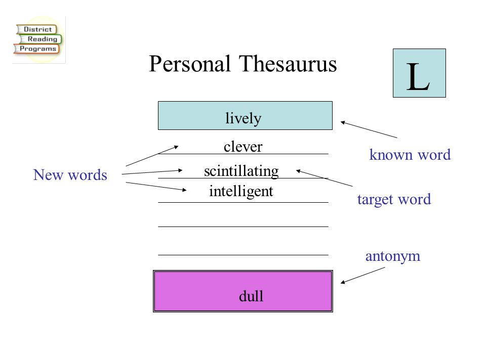 Personal Thesaurus scintillating dull lively intelligent clever L New words known word antonym target word