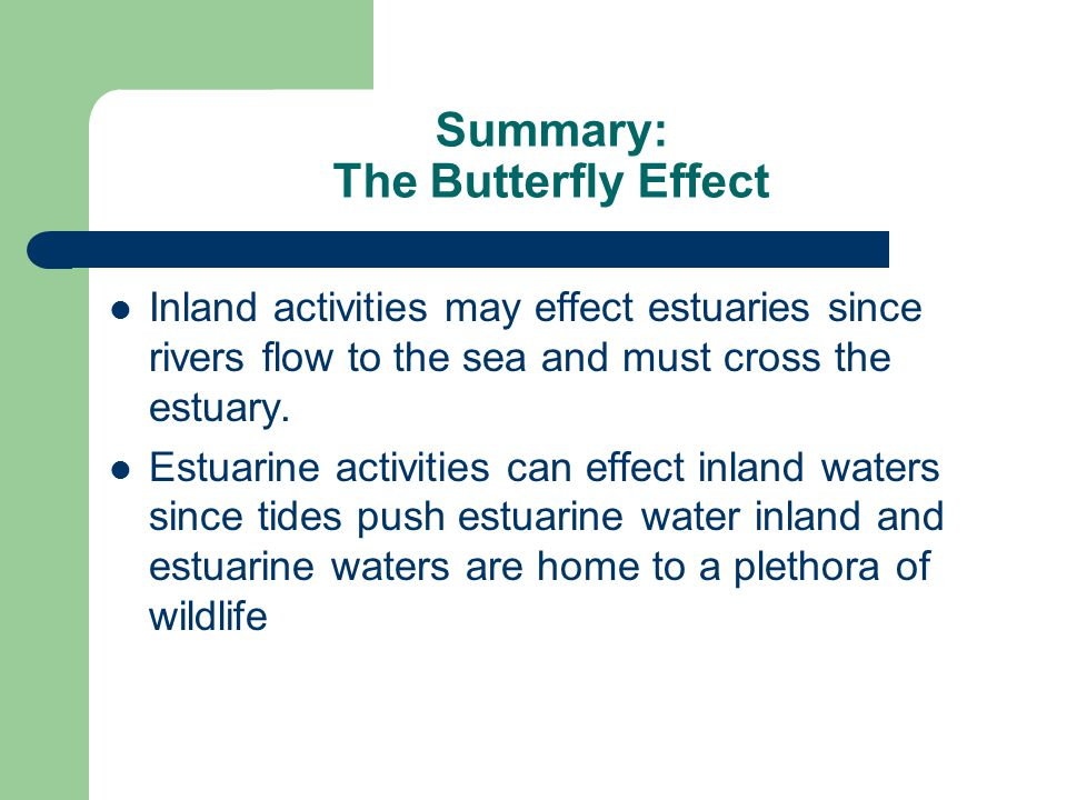 Summary: The Butterfly Effect Inland activities may effect estuaries since rivers flow to the sea and must cross the estuary.