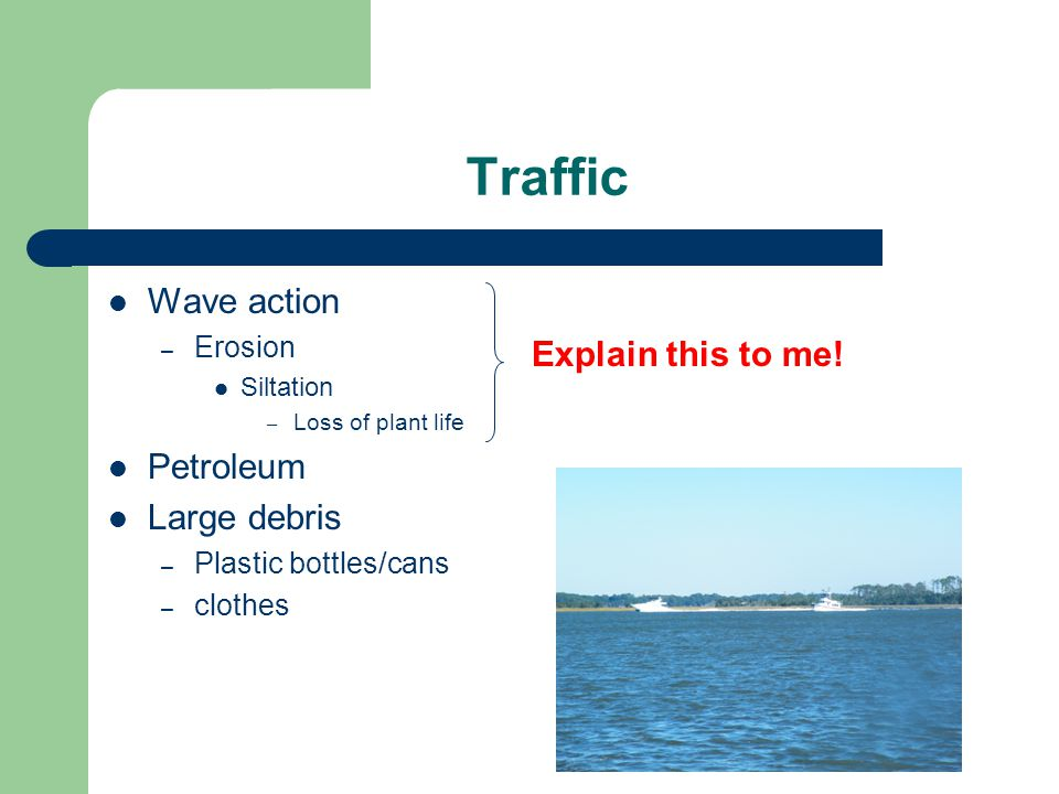 Traffic Wave action – Erosion Siltation – Loss of plant life Petroleum Large debris – Plastic bottles/cans – clothes Explain this to me!