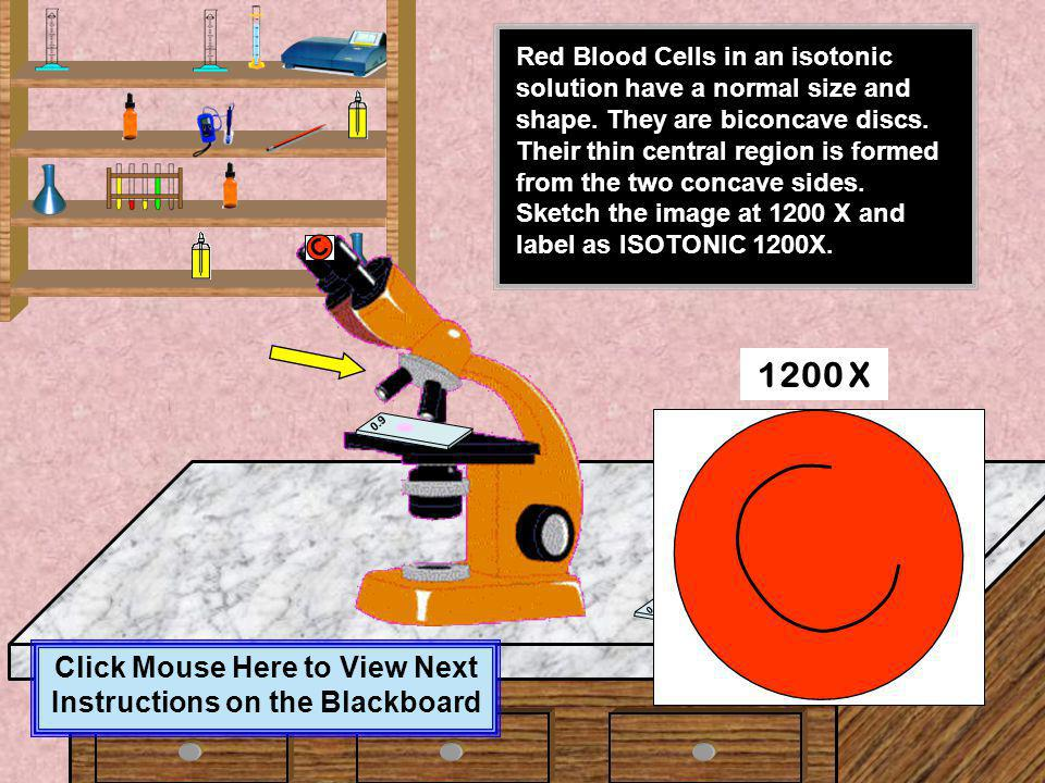 Click on the slide which is marked as 0.9 (Isotonic) Once the slide is in place click on the focusing knob to see the magnified image at 450 X 0.7 0.1