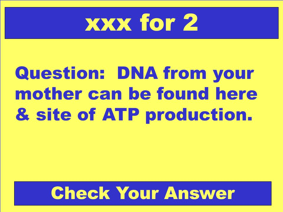Question: DNA from your mother can be found here & site of ATP production.