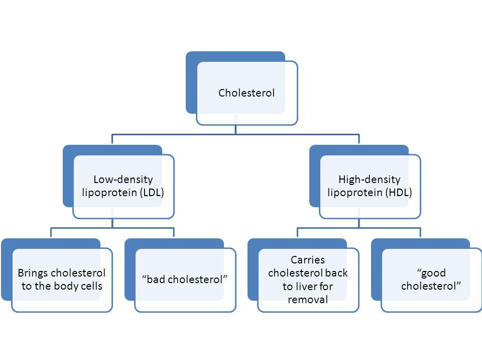 """Cholesterol Low-density lipoprotein (LDL) Brings cholesterol to the body cells """"bad cholesterol"""" High-density lipoprotein (HDL) Carries cholesterol ba"""