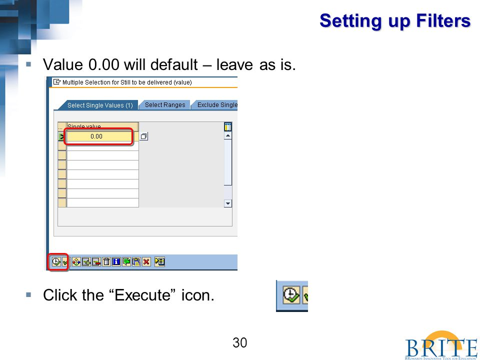 30 Setting up Filters  Value 0.00 will default – leave as is.  Click the Execute icon.