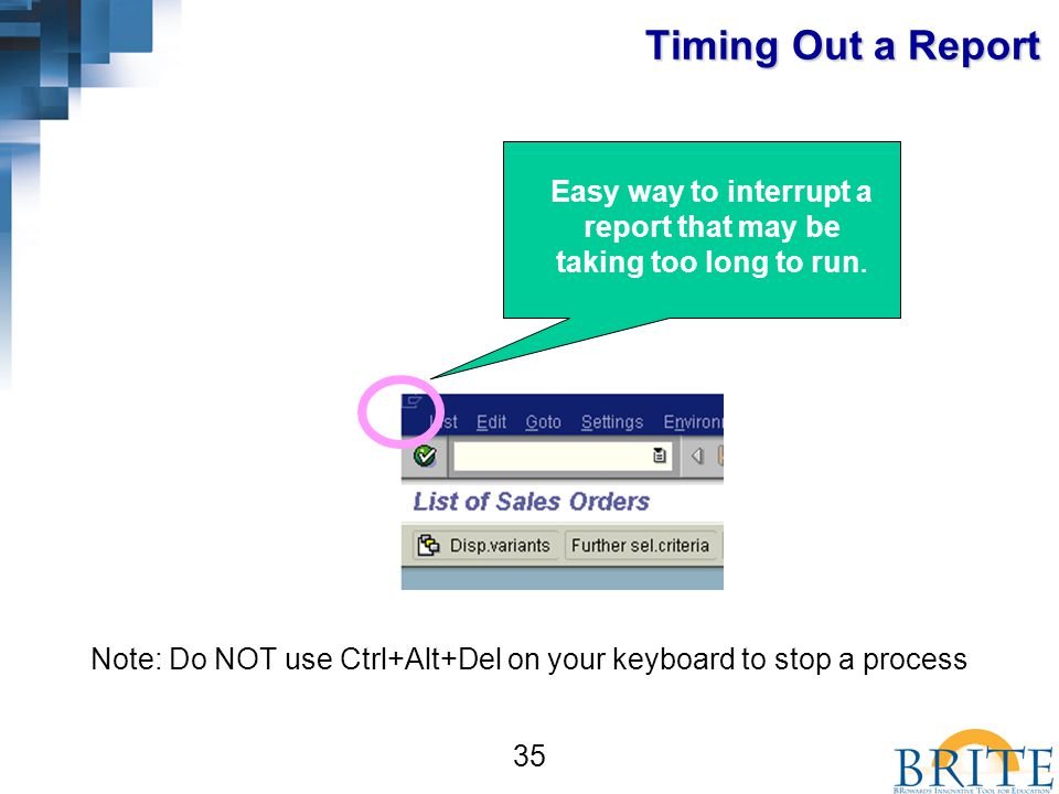 35 Easy way to interrupt a report that may be taking too long to run.