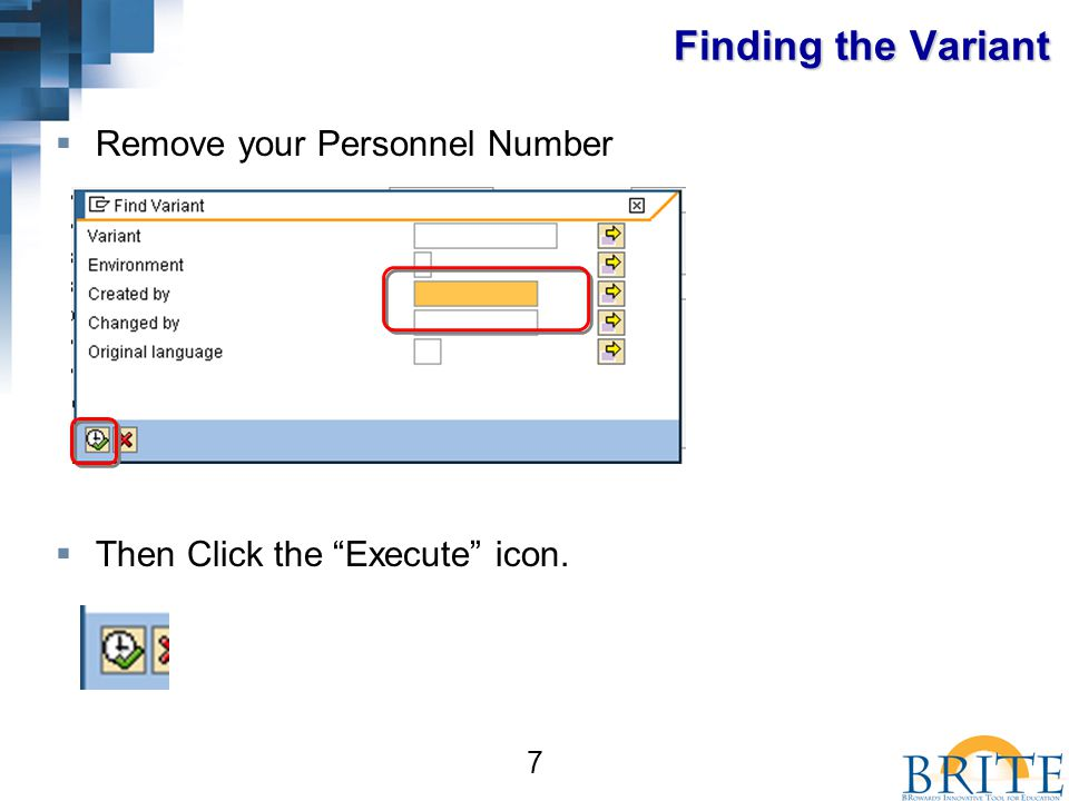 7 Finding the Variant  Remove your Personnel Number  Then Click the Execute icon.