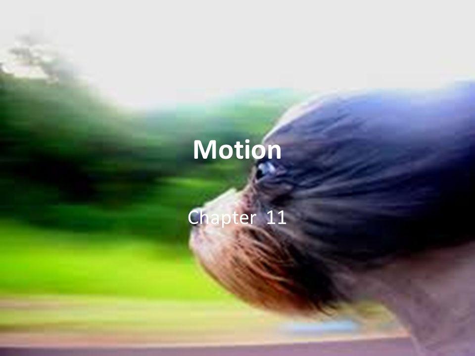 Momentum Momentum- quantity of motion = mass x velocity units: kg x m/s p mv