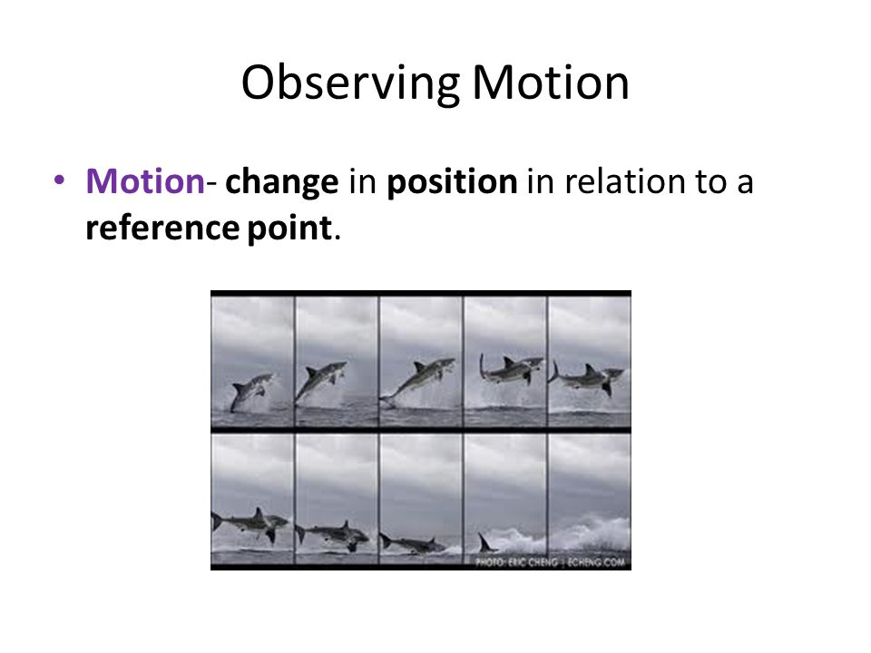 Measuring Motion: Distance Distance- how far an object moves on a path Displacement- how far between starting and ending points on a path