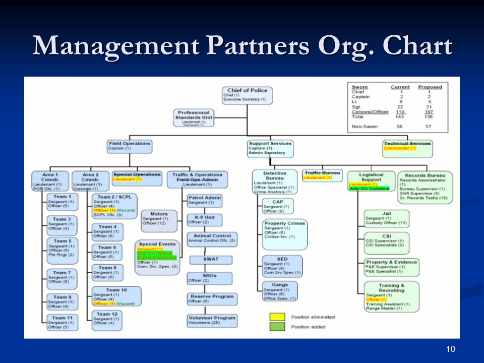 10 Management Partners Org. Chart