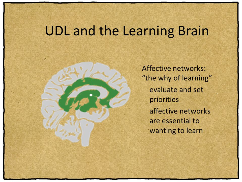"Affective networks: ""the why of learning"" evaluate and set priorities affective networks are essential to wanting to learn"