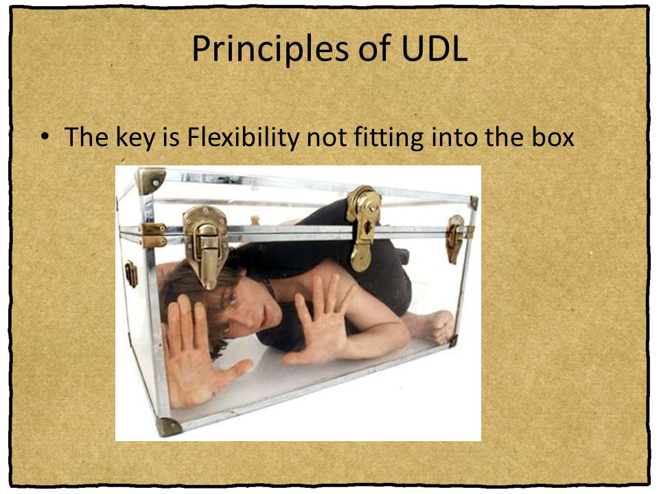 Principles of UDL The key is Flexibility not fitting into the box