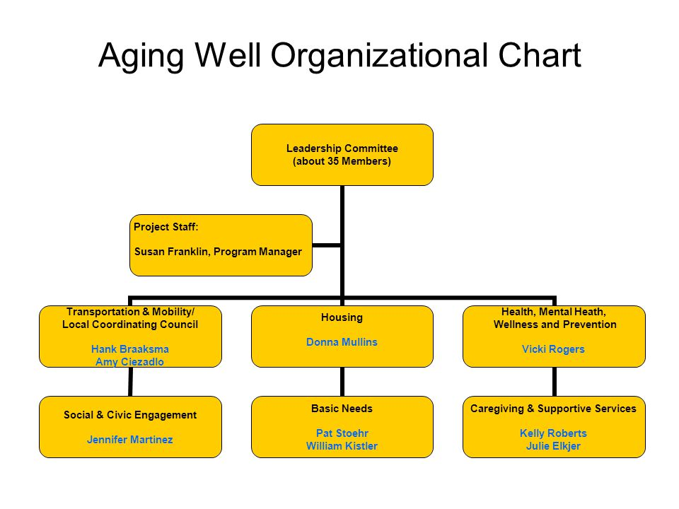 Aging Well Organizational Chart Leadership Committee (about 35 Members) Transportation & Mobility/ Local Coordinating Council Hank Braaksma Amy Ciezad