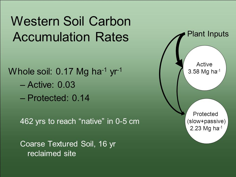 Western Soil Carbon Accumulation Rates Whole soil: 0.17 Mg ha -1 yr -1 –Active: 0.03 –Protected: 0.14 462 yrs to reach native in 0-5 cm Coarse Textured Soil, 16 yr reclaimed site Active 3.58 Mg ha -1 Protected (slow+passive) 2.23 Mg ha -1 Plant Inputs