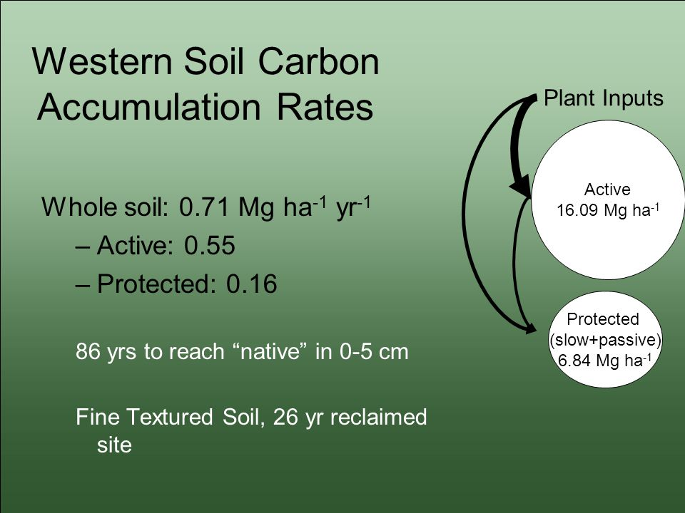 Western Soil Carbon Accumulation Rates Whole soil: 0.71 Mg ha -1 yr -1 –Active: 0.55 –Protected: 0.16 86 yrs to reach native in 0-5 cm Fine Textured Soil, 26 yr reclaimed site Active 16.09 Mg ha -1 Protected (slow+passive) 6.84 Mg ha -1 Plant Inputs