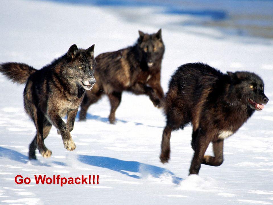 Go Wolfpack!!!