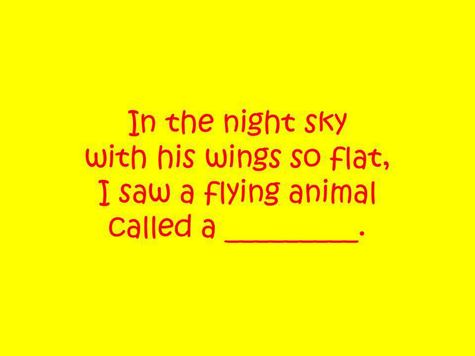 In the night sky with his wings so flat, I saw a flying animal called a _________.