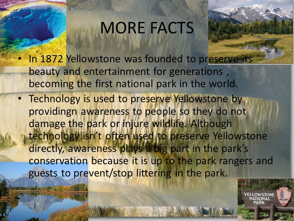 MORE FACTS In 1872 Yellowstone was founded to preserve its beauty and entertainment for generations, becoming the first national park in the world.